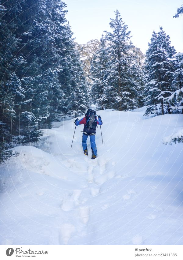 Prepper flees, fully equipped, for fear of the Corona virus, for three weeks in the wilderness hikers Snow Adventure Winter Mountain trekking Hiking
