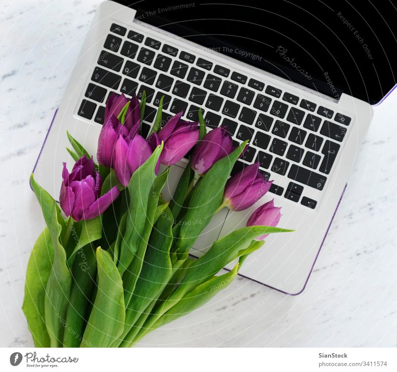 Computer with bouquet of purple tulips laptop computer background spring white design business office desk space work table flowers natural up copy floor green
