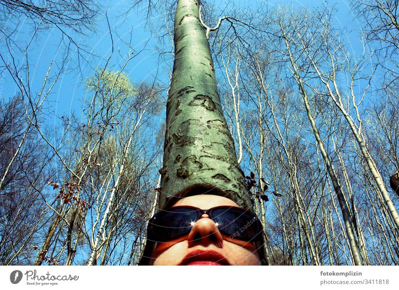 Female face with sunglasses from below with tree trunk in the background Forest Forest walk Clearing woodland Forest atmosphere Tree trunk Treetop Tree bark