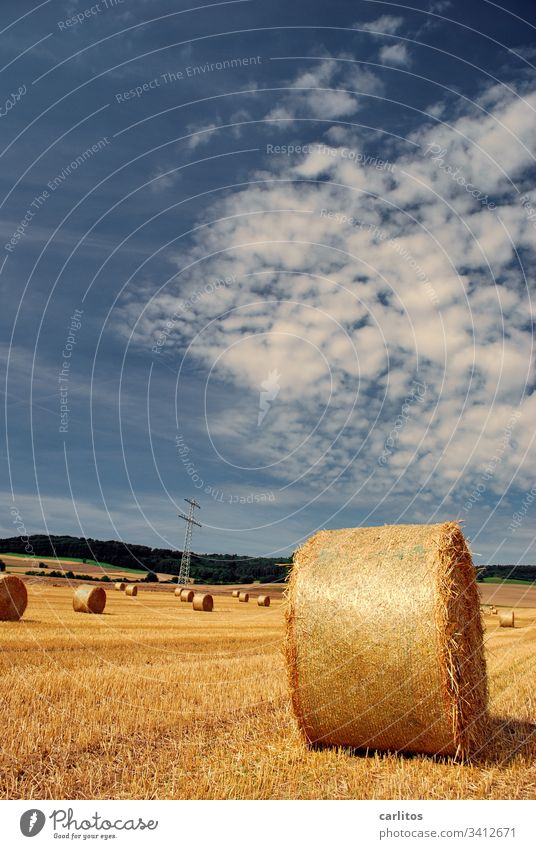 Straw rollers maintain minimum distance Bale of straw Straw rolls Agriculture Summer Autumn Field Landscape Clouds Harvest Yellow Grain Warmth Beautiful weather