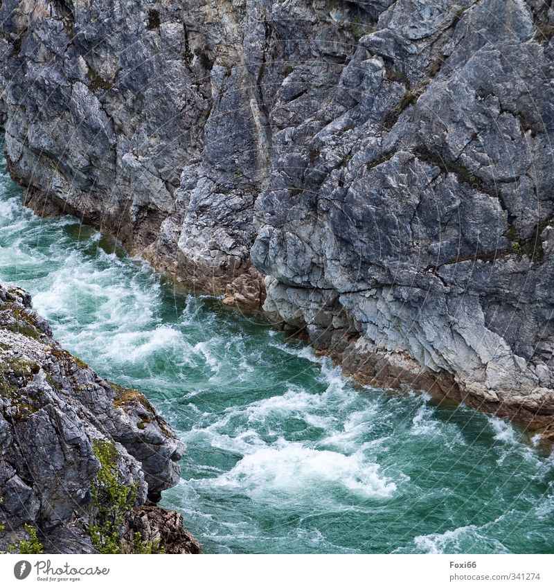 """white water Nature Elements Air Water Summer Climate change """"Lichens Moss"""" Mountain Fjord Canyon Stone Threat Firm Fluid Fresh Cold Natural Blue Gray Green"""