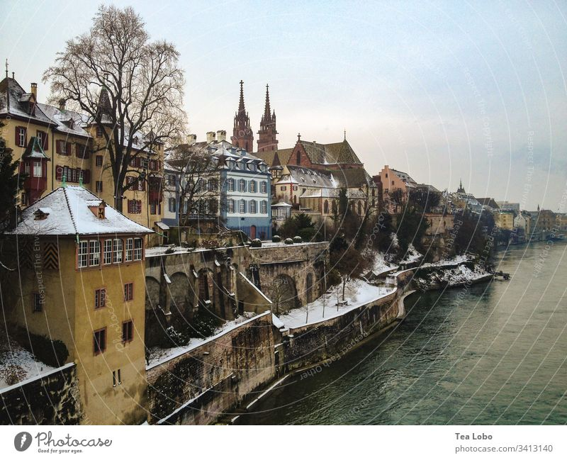 Basel riverside Rhine River bank Colour photo Exterior shot Water Landscape Tree Cathedral Basel Cathedral Landmark Tourist Attraction Town Skyline Switzerland