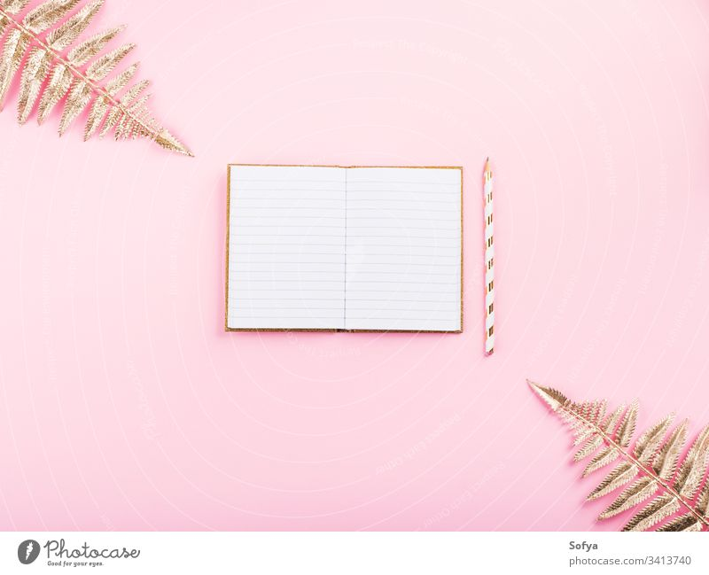 Golden branches and open notebook on pink diary page white empty goal write journal plan tropical notepad plant golden mockup mock up concept inspiration