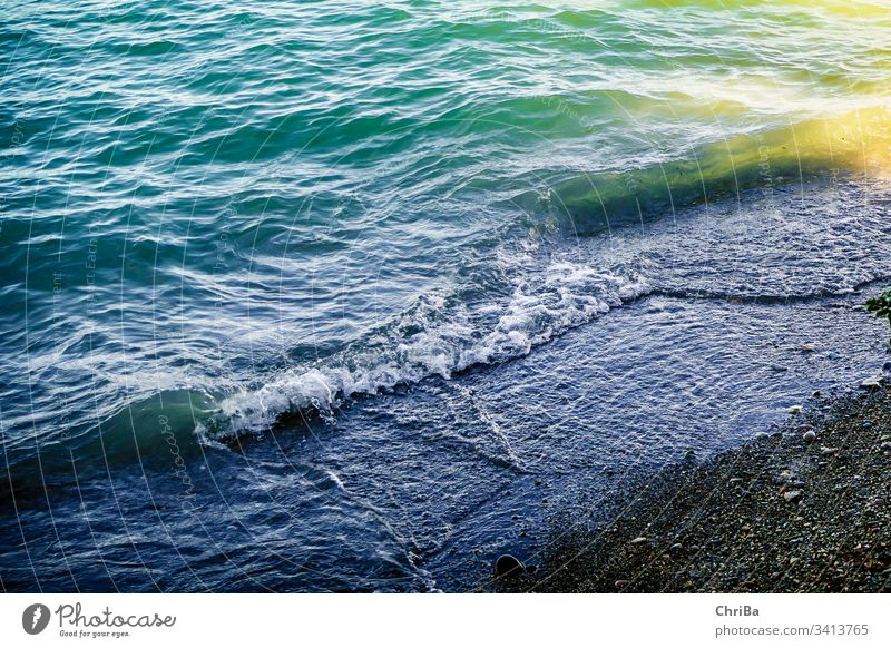 Waves on the beach of the Bodensee lake Lake Constance wave Sand water shore turquoise blue coast nature natural buzzer beautiful view sunny outdoors seaside
