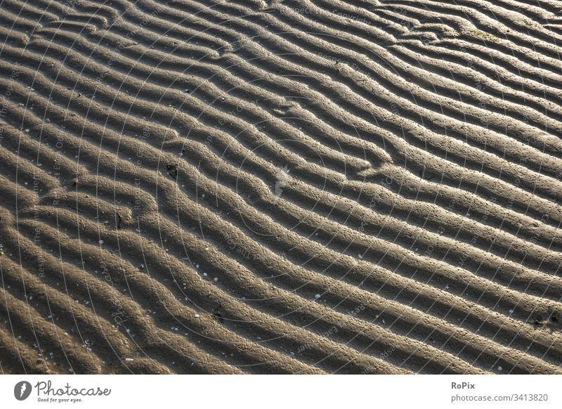 Patterns in the mudflats at night. Beach beach Coast Ocean sea Sandy beach seashells Baltic Sea ocean vacation coastal migration Relaxation tranquillity
