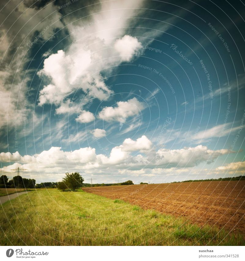 Sky Nature Plant Summer Calm Landscape Clouds Environment Grass Horizon Air Weather Field Earth Climate Beautiful weather