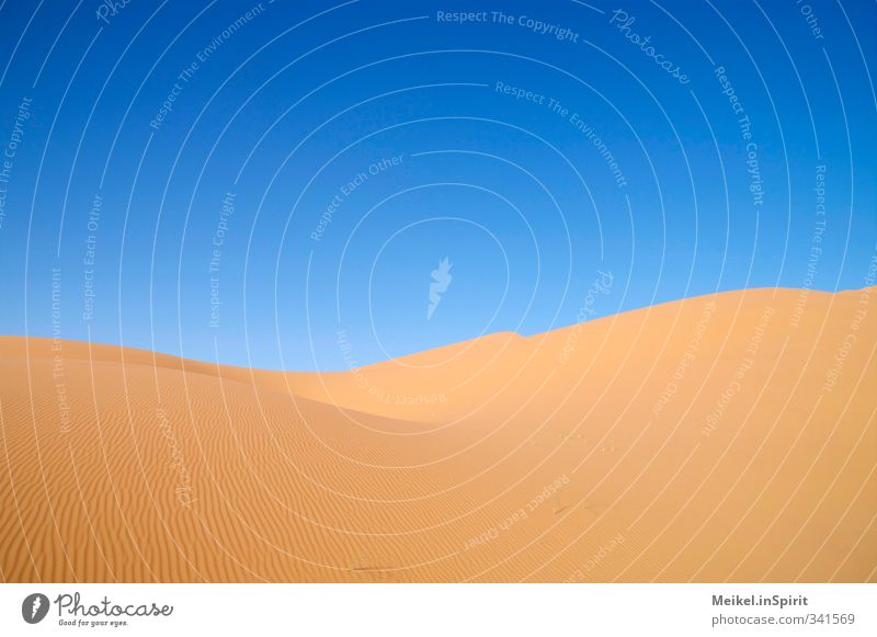 dune Environment Landscape Sand Climate Climate change Beautiful weather Warmth Drought Desert Sahara Erg Chebbi Dune Infinity Hot Dry Blue Brown Yellow