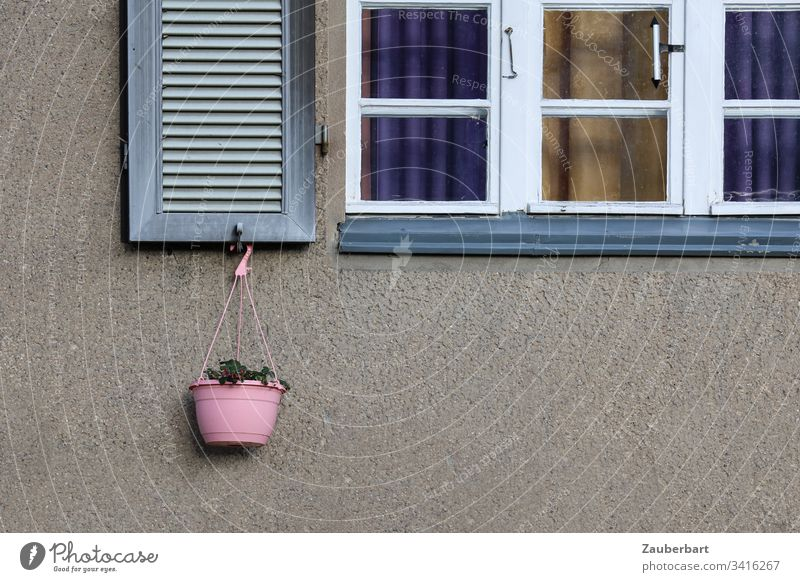 mullion window, white frame, shutter and pink flower basket in front of grey facade Window Shutter Lattice window Window frame White Basket Pink Hang Facade