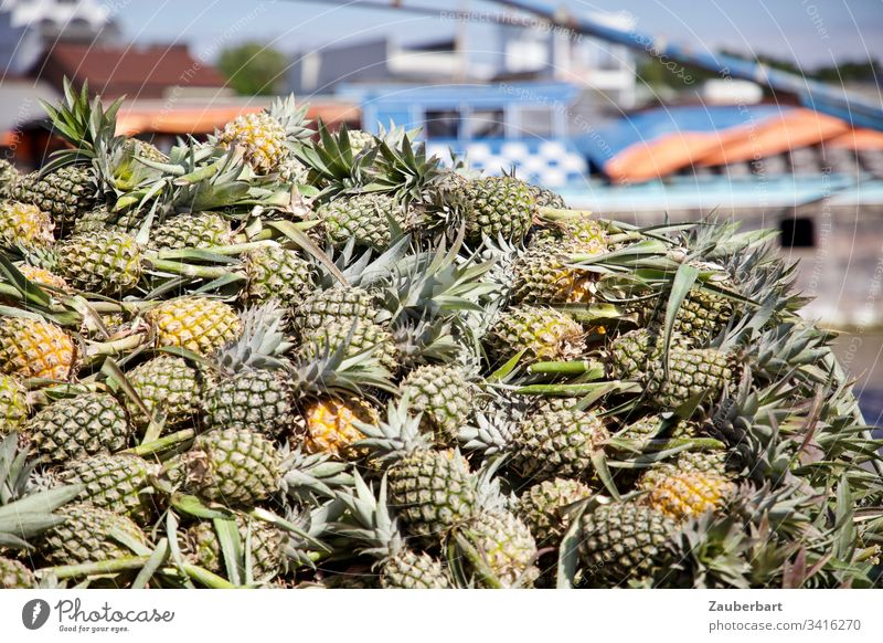 A stack of pineapples on a floating market in the Mekong Delta Pineapple fruit Stack Markets Vietnam Green Food Fruit Fruit- or Vegetable stall Fresh Delicious