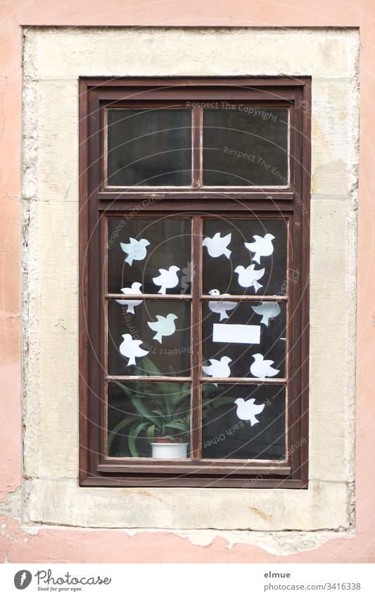 white paper doves behind a window Paper Pigeon White white doves Window Glass window Bird symbol Dove of peace House (Residential Structure) Desire wish