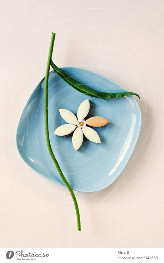 Calissonflower II Candy Crockery Plate Flower Blossom Stalk Daisy Bright Broken Delicious Blue Green Pain Divide calisson Headless Cut Deserted Copy Space top