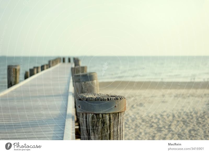 Catwalk to the sea Footbridge Beach Ocean you vacation holidays wooden posts nobody Copy Space North Sea Baltic Sea Sylt Norderney Amrum bunch Fohr Helgoland