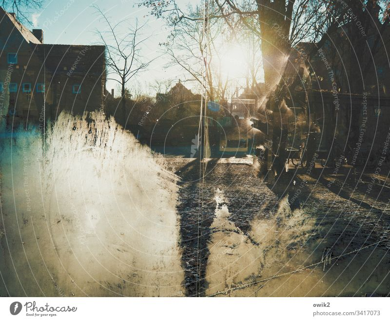 Ice disk Bus stop Glass Pane Protection Transparent iced Winter Frost chill Sun Sunlight Back-light shine.radiate Cloudless sky trees Park Branches and twigs