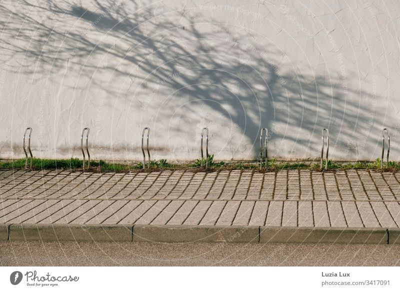 bicycle rack, behind it the shadow of a tree Lifestyle Leisure and hobbies Playing Sports Town Building Wall (barrier) Wall (building) Concrete Above Brown