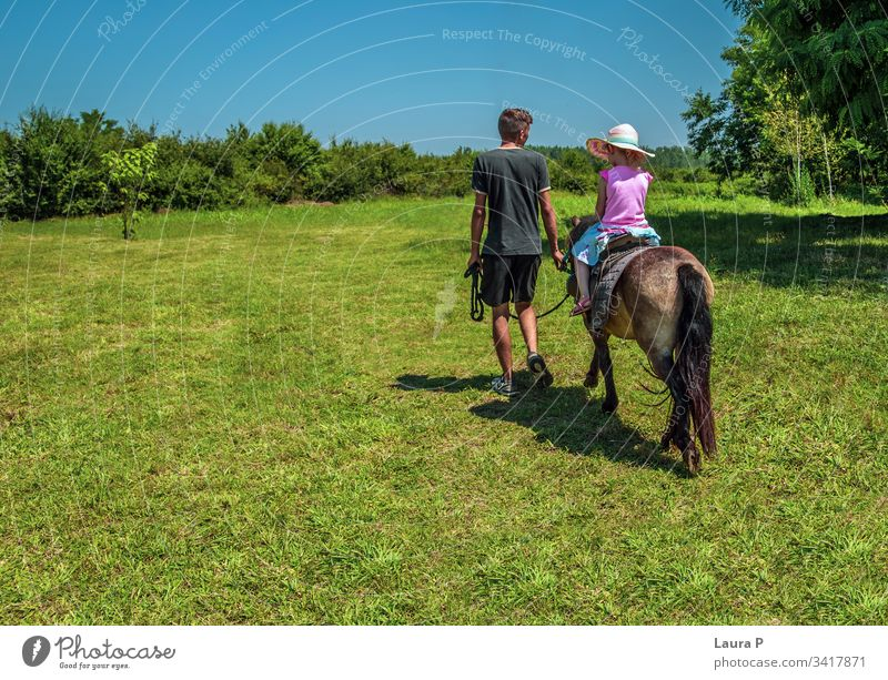 Little girl riding a pony in a green field in summer activity animal at the countryside at the farm beautiful breed care child childhood cute equestrian