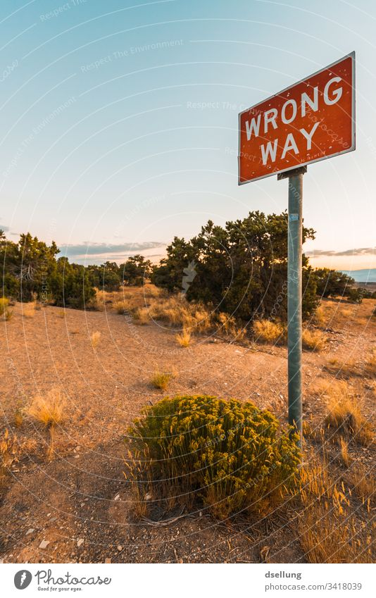 Sign Wrong way in the middle of bushes and trees Wide angle Panorama (View) Long shot Twilight Evening Copy Space top Exterior shot Colour photo Warn Bans