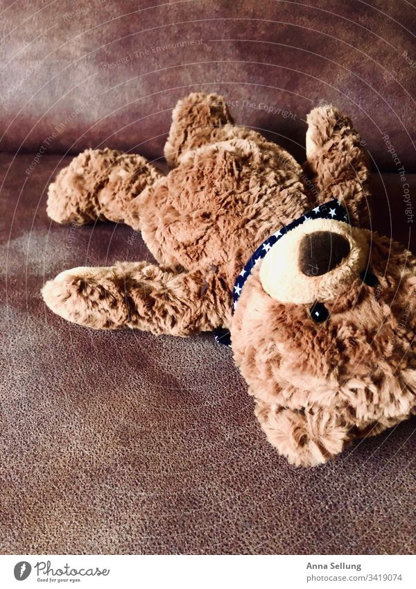 Brown teddy bear forgotten on the couch Toys Playing Infancy Childhood memory Deserted Multicoloured Forget left Loneliness Past Memory Interior shot Grief