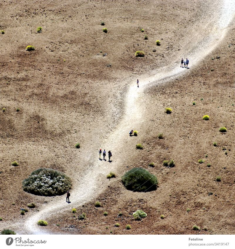 The path is the destination - or a path in a desert-like environment where tiny walking people can be seen at the foot of the Teide in the Teide National Park on the Spanish island of Tenerife