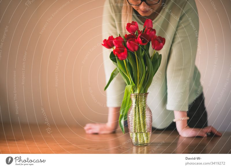 Woman smells red tulips Young woman Joy Spring Mother's Day In love Joie de vivre (Vitality) Sunlight Spring flower fragrances Vase Spring colours Flower Light