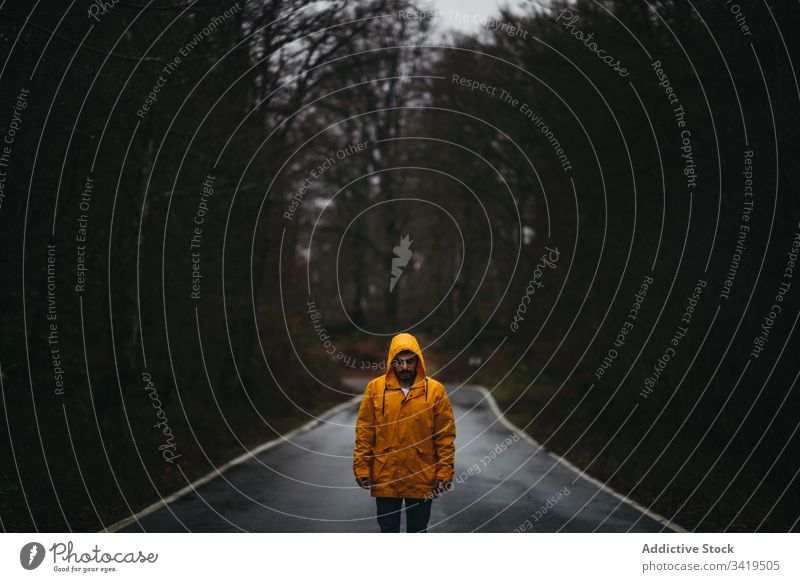 Man standing on lonely road in autumn forest man walk nature rain way tree season weather empty casual yellow coat jacket freedom countryside asphalt scary