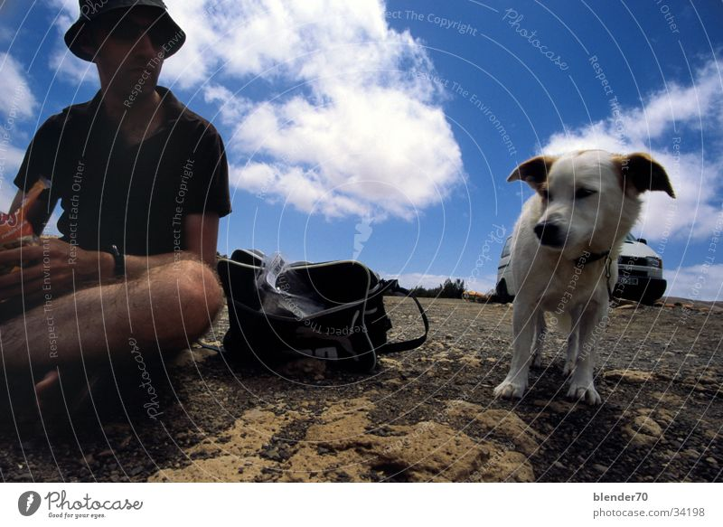 Yes, who are you!??? Dog Friendship Wide angle Unfriendly Feed Humor Human being Nutrition Mistrust Joy