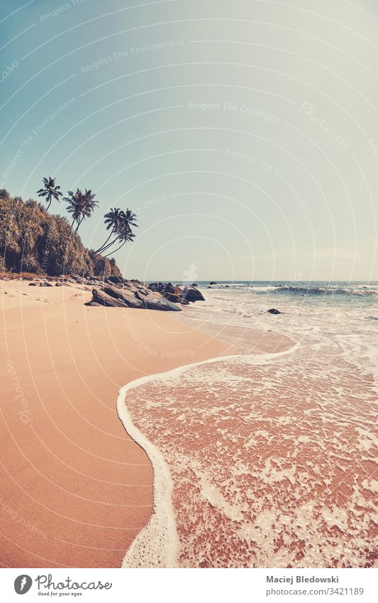 Tropical beach, color toning applied. sea summer water travel nature ocean retro palm filtered vintage instagram effect vacation sky island sand paradise
