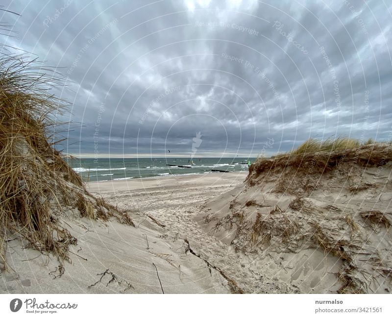 Virtual journey Baltic Sea Ocean Beach Weather To go for a walk Waves Sand breakwater strandgrass Sky Clouds salt water Wind vacation Far-off places Sports