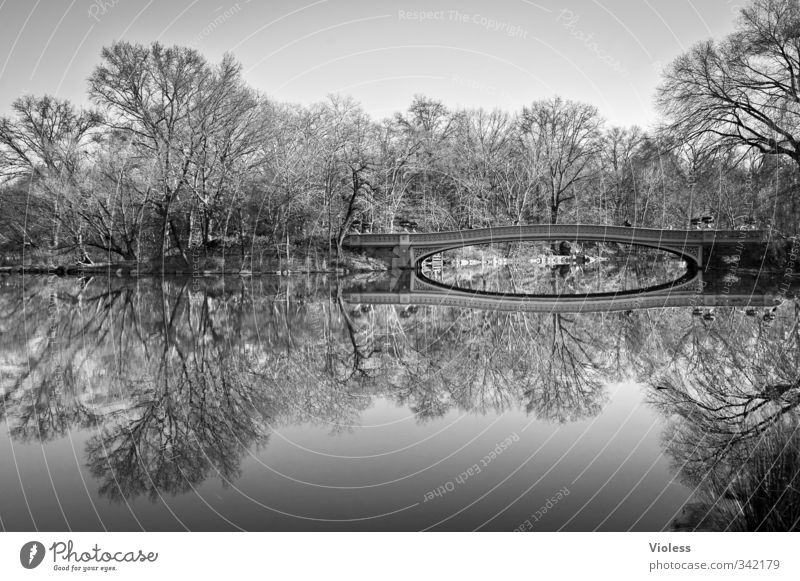 ...double Capital city Park Bridge Tourist Attraction Central Park Relaxation Famousness Romance Beautiful Calm New York Reflection Black & white photo
