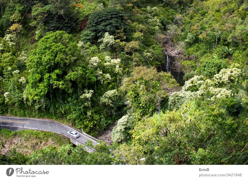 Car Drives along One Lane Road in Jungle with Waterfall travel road highway drive driving Hana Maui Hawaii tourism adventure discover vacation explore flora