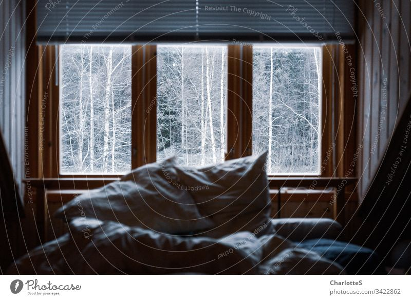 An empty bed with crumpled bedding in the wooden house in front of the window. Outside snow-covered birches. Snow Winter Forest Birch tree Fog Wooden house Hut