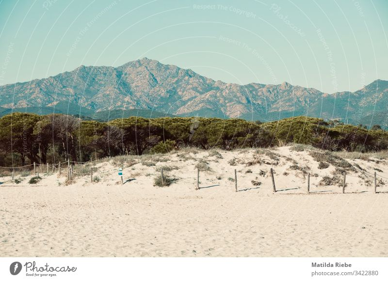 Beach with mountain landscape in the background Sand Mountain Landscape trees Sky Nature Vacation & Travel Cloudless sky Summer Beautiful weather Trip