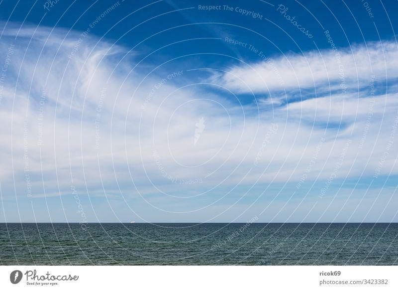 View of the Baltic Sea near Ahrenshoop Coast fischland-darß Baltic coast Ocean ship Sailing ship Windjammer Beach Sky Clouds Blue Mecklenburg-Western Pomerania
