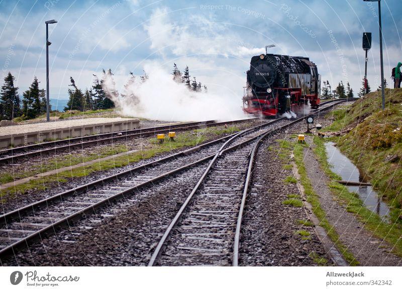 One way, twenty euros Nature Spring Wind Mountain Brocken Harz Rail transport Train travel Engines Steamlocomotive Railroad tracks Switch Railroad system Old