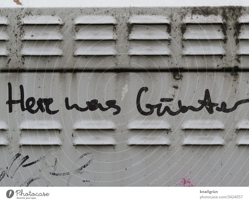 Here was Günter graffiti on a transformer station Graffiti communication cursive Communication Language Word Letters (alphabet) Typography Text Characters