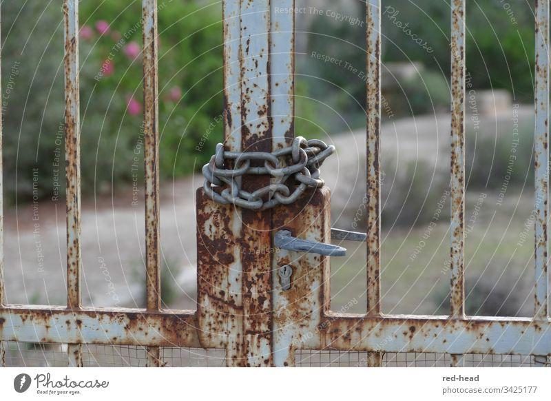 rusty garden gate closed with chain, with blurred background Garden door Closed corona Metal Door lock locked Chain Exterior shot Day Detail Close-up