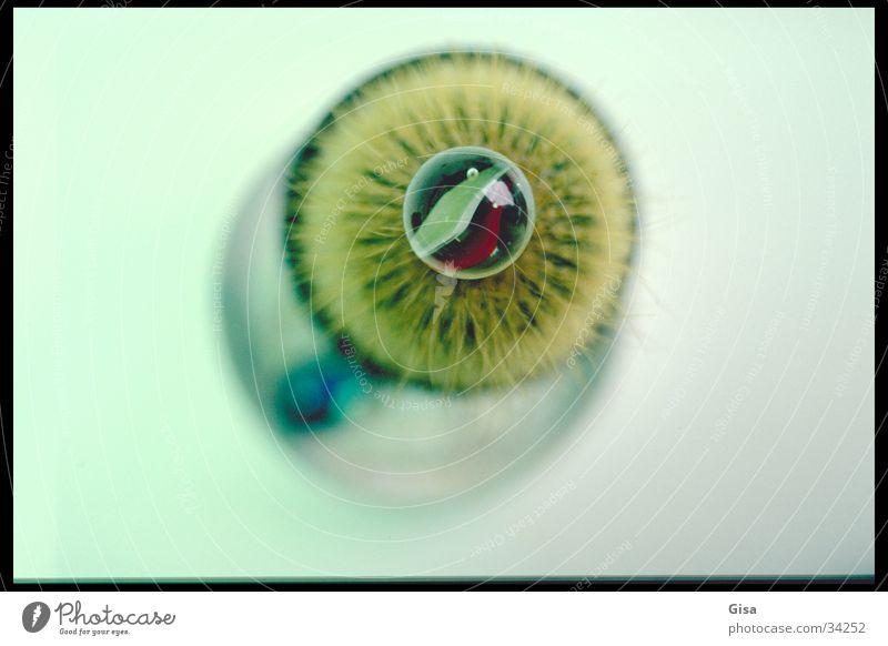 iris Cactus Kiwifruit Green Obscure Iris glass marble Eyes