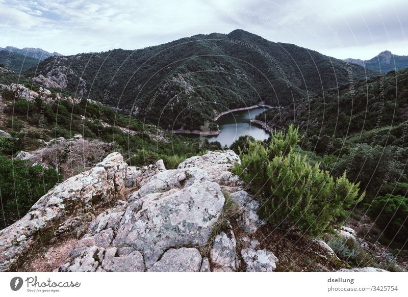 View of a mountain lake with rocks and bushes in the foreground Wellness Rock Time to yourself Expedition Break Camping Earth Climate change Harmonious Contrast