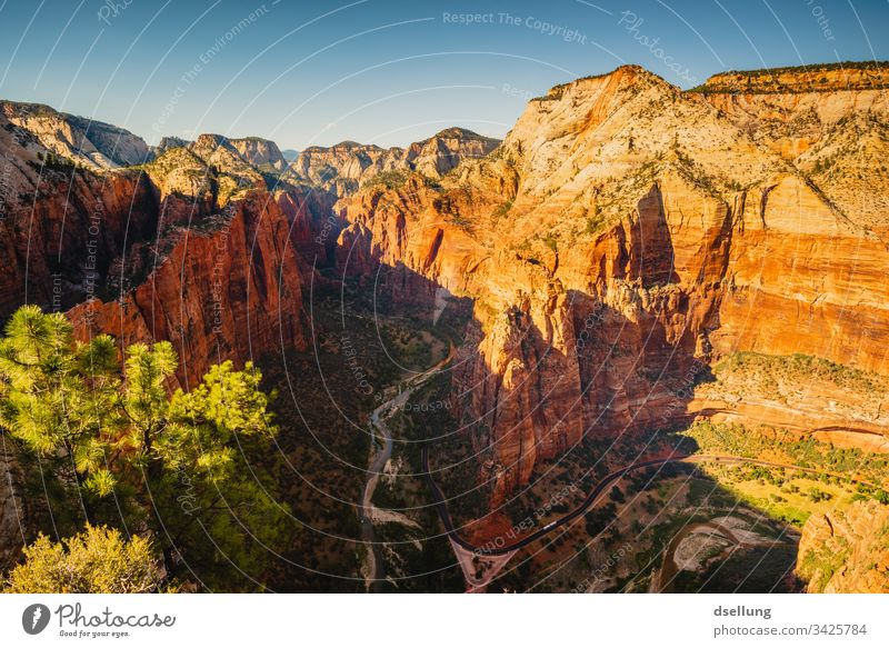 View into Zion Canyon at sunset Evening West Elements Trip Hiking Freedom Wanderlust Earth Stone Contrast Summer Mountain Sunlight Tourism Climate Americas