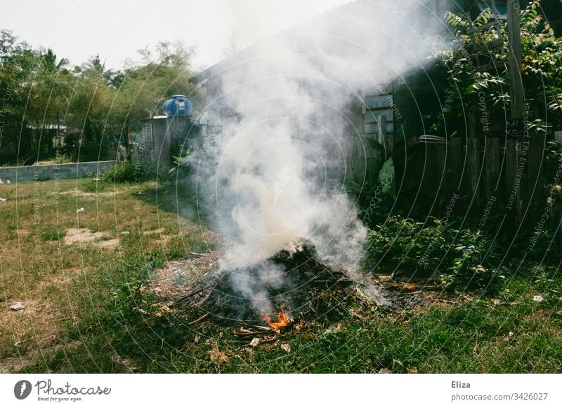 A fire in a green meadow in a garden Fire incinerate sb./sth. Asia Refuse incineration Compost Garden Lawn Meadow Smoke harmful to the environment Deserted