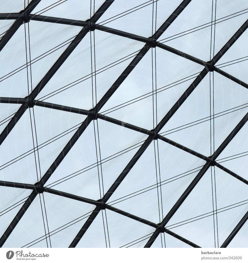 Building materials | Glass and steel Sky Stuttgart Downtown Places Manmade structures Architecture Window Roof Metal Steel Line Stripe Network Bright Tall
