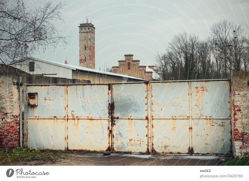 Mühlberg, Elbe Goal Tower House (Residential Structure) Wall (barrier) trees Sky cloudy cordon too Closed Gloomy Exterior shot Colour photo Day Building Door