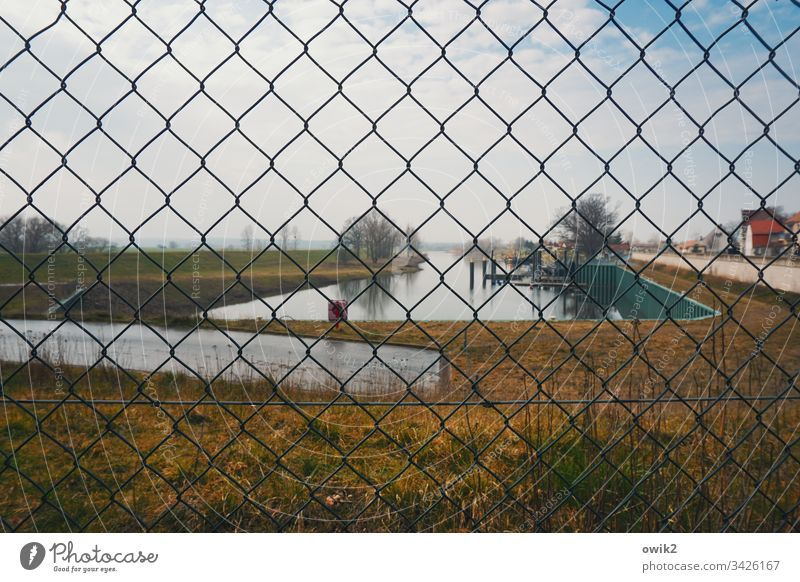 Mühlberg, harbour Wire netting Fence Harbour Basin Water Grass cordon Territory trees Shallow depth of field Wire netting fence Exterior shot Deserted Day
