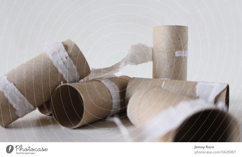 Empty toilet paper rolls Toilet paper Paper Coil Interior shot White Deserted Bathroom Colour photo