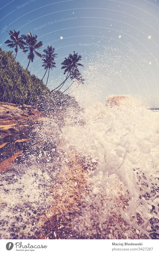 Tropical beach with wave crashing against rocks. sea summer water splash travel nature palm tree ocean retro filtered vintage instagram effect vacation sky