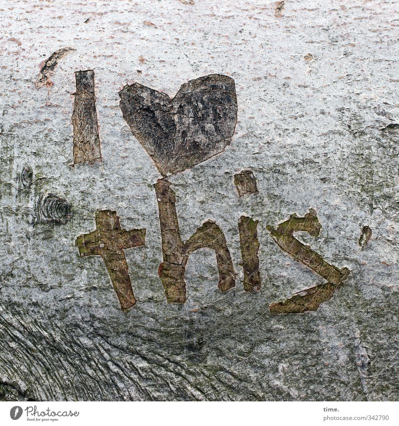 Tree Graffiti Love Life Emotions Happy Time Design Characters Change Sign Romance Illustration Joie de vivre (Vitality) Passion Infatuation