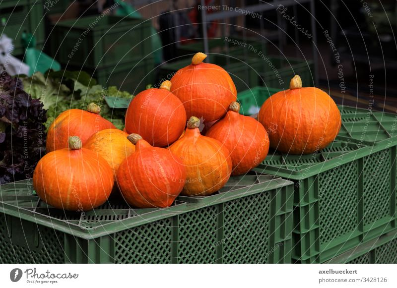 Hokkaido pumpkins at the weekly market Hokkaido Pumpkin Markets Food Vegetable Vegetarian diet Deserted Healthy Eating Organic produce Autumn Orange Nutrition
