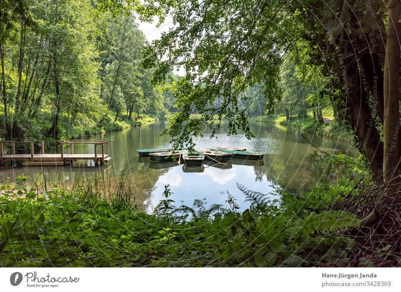 Rowing boats on a mountain lake with wooden jetty in a wooded valley Mountain lake Pond Water pond Rowboat local recreation area Relaxation Calm relaxation