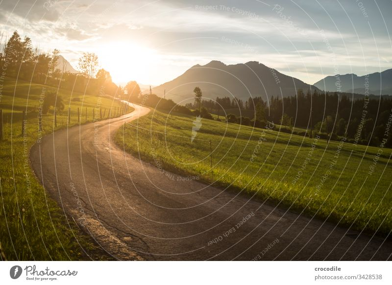 Side road in the mountains with sunset Lanes & trails Street Sunset Sunlight Back-light Mountain Austria Alps Meadow Farm