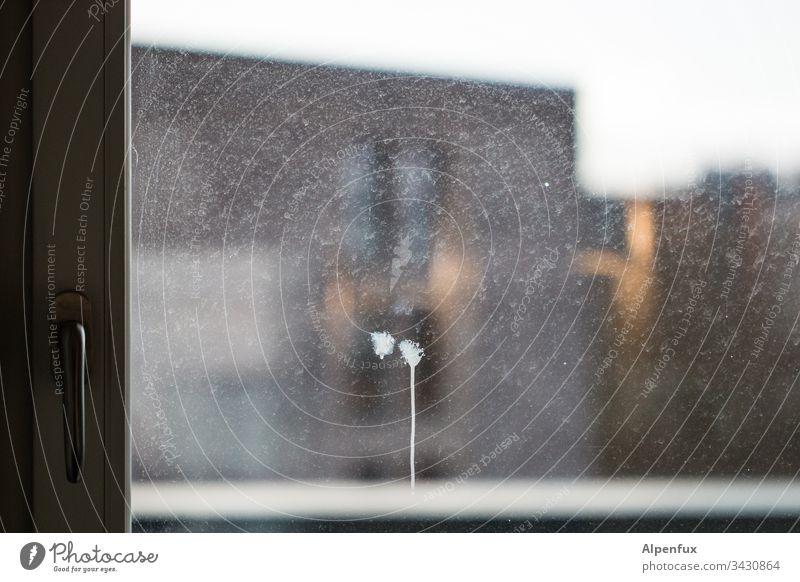You scared? Window Window pane Dirty Glass Deserted Colour photo Pane Transparent Exterior shot Interior shot Day Slice Window frame Vantage point