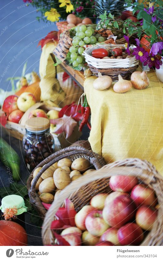Plant Flower Eating Food Fruit Nutrition Herbs and spices Fish Vegetable Grain Harvest Apple Crockery Bread Plate Baked goods